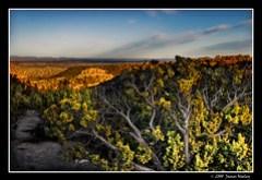 New Mexico Horizons