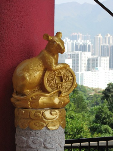 Golden rat in Hong Kong