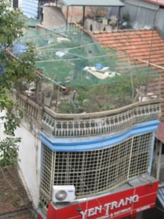 Hanoi Rooftop Garden