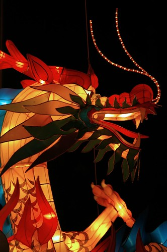 Dragon's Chi