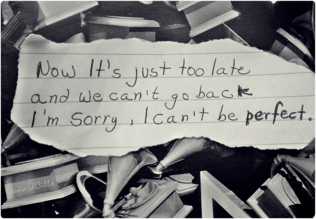 I'm Sorry, I Can't be perfect.