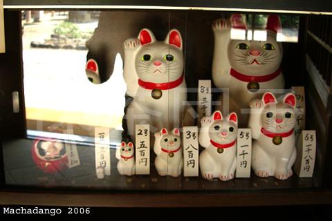 [05.05.27] 社務所的招財貓