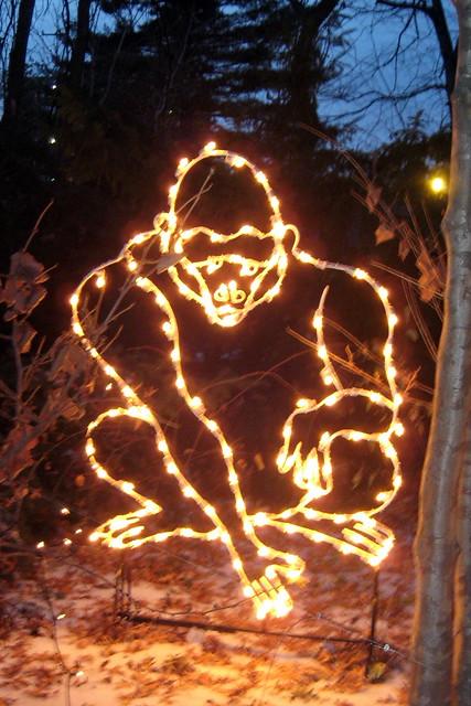 Bronx Zoo Holiday Lights