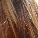Beneficios del aceite de argan para el cabello