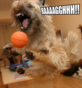 Raaaaaaggghhhhhhh!