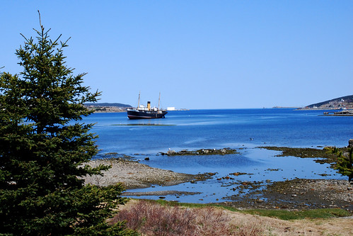 The Kyle, Harbour Grace