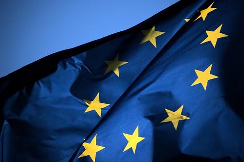 Bandiera dell'Unione (EU Flag)