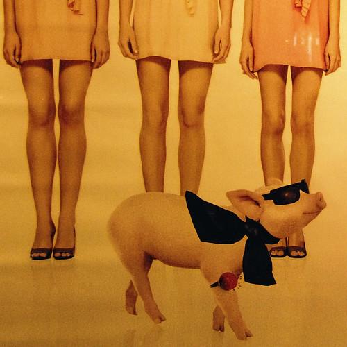 The fashion designer ad