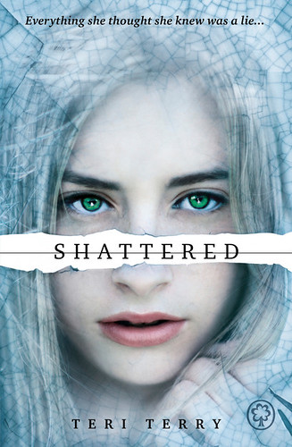 Teri Terry, Shattered