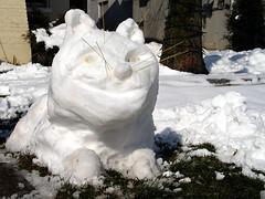 Dicke Schneekatze