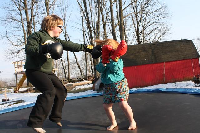 Trampoline Boxing