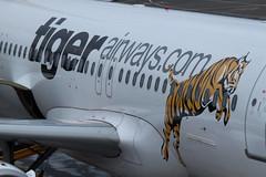 Aircraft at Adelaide Airport