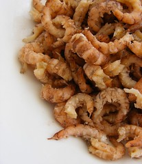 Peeled Brown shrimp