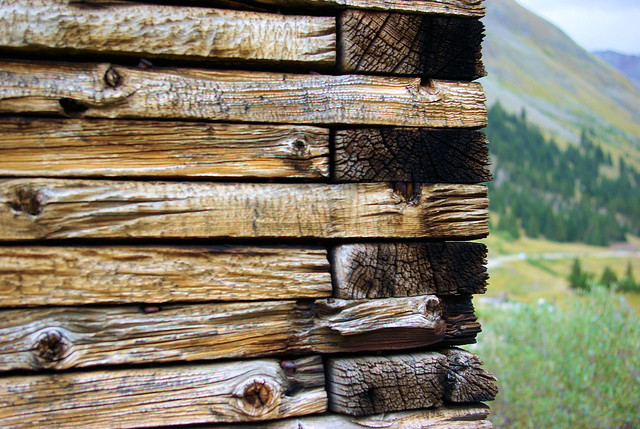 Log Structure Detail, Animas Forks Ghost Town, Colorado September 8, 2009