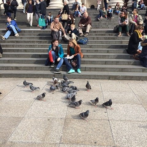 Feed the birds, tuppence a bag.
