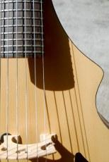 Acoustic Guitar Viol by Jonathan Wilson