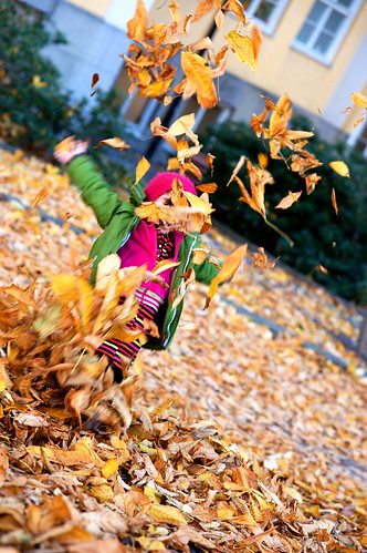 leavesexplosion
