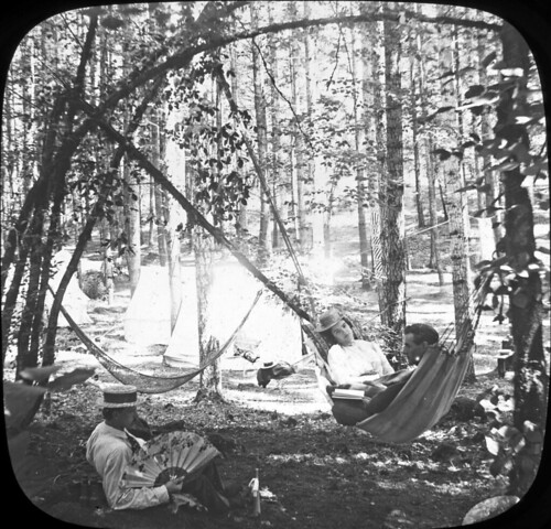People hanging out in a hammock