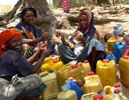 Milk collection in rural Ethiopia
