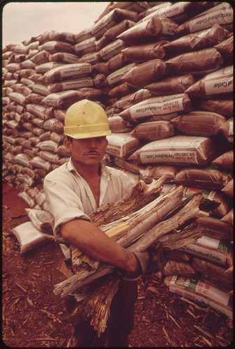 Worker from Mexico at a Cedar Mill near Leakey, Texas, near San Antonio 05/1973