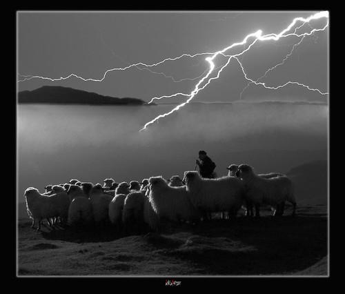 Atardecer, rebaño y tormenta by Jabi Artaraz