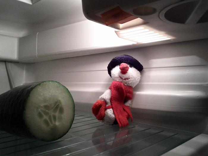 Schneemann im Kühlschrank - Kind 2 setzt sich für artgerechte Haltung von Schneemännern ein