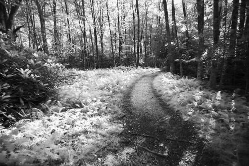 Infra Trail 2