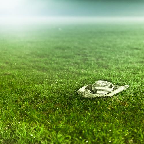 Green Grass por ►CubaGallery
