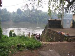Chengannur river bath 3