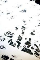 Glacier near Haynes, Alaska