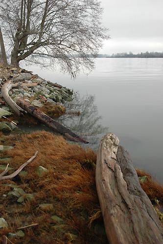 Steveston waterfront