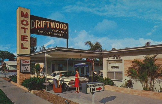 Driftwood Motel - 1600 34th Street South, Saint Petersburg, Florida U.S.A. - 1950s