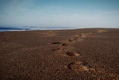 Footsteps in Sand