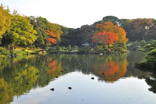 Kiyosumi Gardens in Autumn