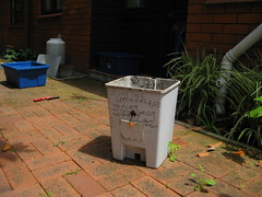 Make a worm bin, Old worm farm (1 of 7)