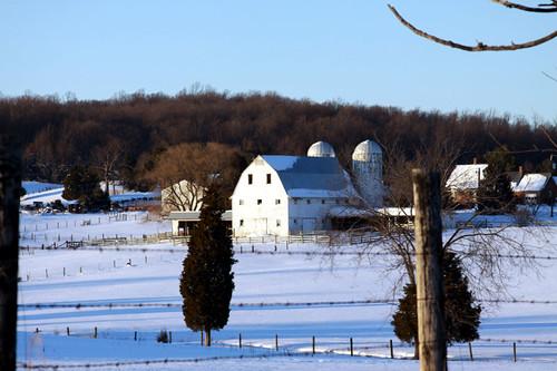 Farm in Snow. Warrenton, VA