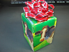Redesigned Milk Carton Gift Box ~ 4 of 4 photos