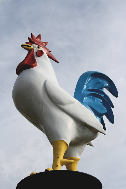 Gigantic Chicken! Photo copyright Jen Baker/Liberty Images. All rights reserved, though pinning to this page is okay.