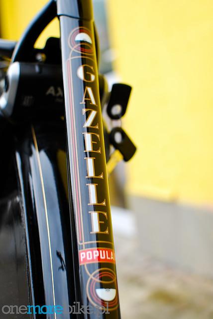 Gazelle Toer Populair R7T - OneMoreBike Custom