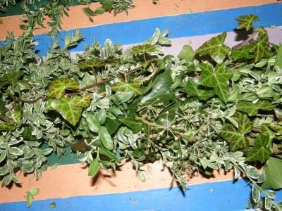 Garland, Ivy, Boxwood, Oregonia