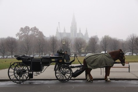 Horse and carriage, Radhaus and fog, Vienna