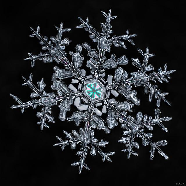 Snowflake-a-Day Finale 2013-2014, snowflake macro photo by Don Komarechka