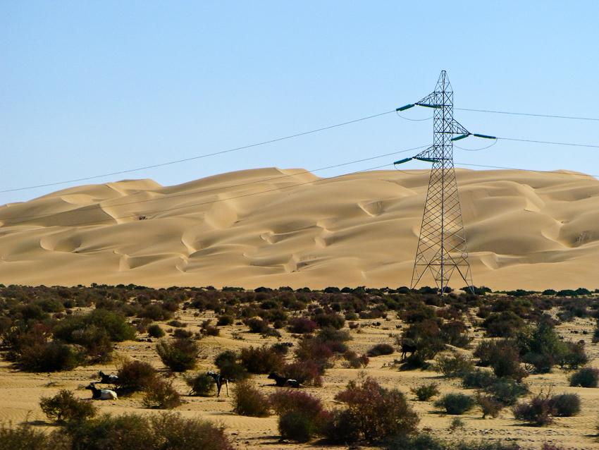 Sanddünen und Strommasten