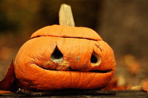 Wrinkly Pumpkin