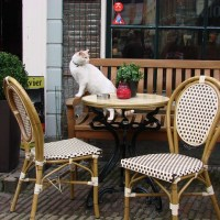 The Best Café in the Netherlands