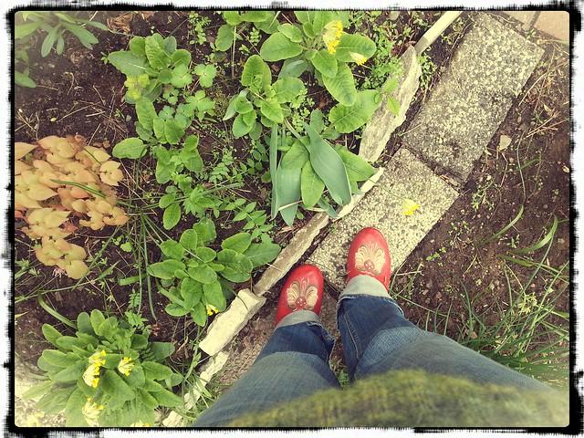 Träskor i trädgård