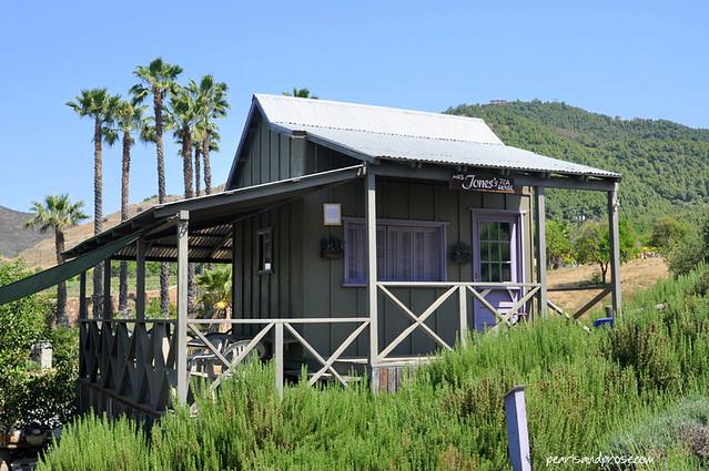 lavender_tea_house_web