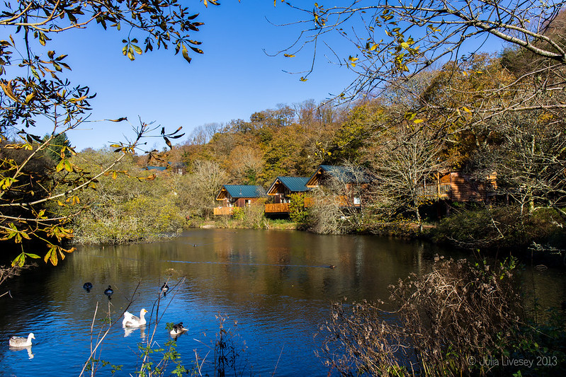Mill Pond and Cabins
