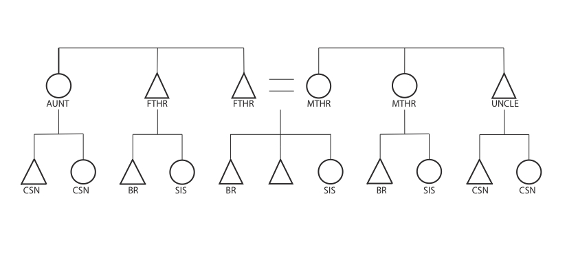 Classificatory And Descriptive Systems Of Kinship  U00ab The Human Family