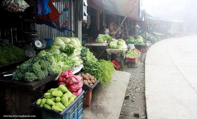 Vegetables mount polis mountain province ifugao